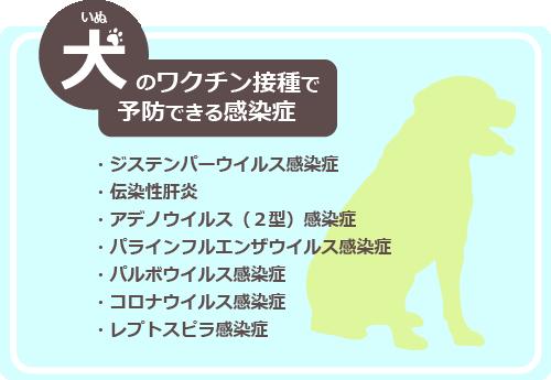 犬 病気予防
